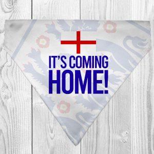 it's coming home dog bandana